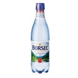 Apa carbogazoasa Borsec 500 ml