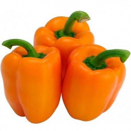 Ardei gras portocaliu vrac kg